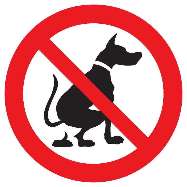 Déjections d'animaux interdites